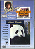 Bob Ross Presents Wildlife Painting: Giant Panda by Bob Ross